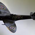 Spitfire by Angel Ciesniarska