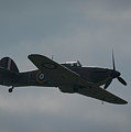Spitfire by Philip Pound