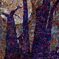 Splayed Trunks by Carol Everhart Roper