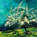 Spring 67 by Pol Ledent