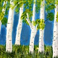 Spring Birch by Becky Giovine
