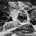 Spring Cascades #9 by Irwin Barrett