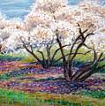 Spring Has Sprung by Art Nomad Sandra  Hansen