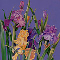 Spring Recital by Ann Peck