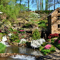 Springtime At The Old Mill by Regina Strehl