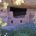 Spruce Tree House - Mesa Verde National Park by Glenn Smith
