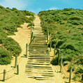 Steps To The Beach by Mountain Dreams