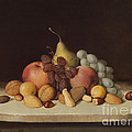 Still Life With Fruit And Nuts by Robert Seldon Duncanson