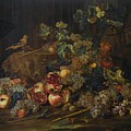 Still Life With Fruit by MotionAge Designs