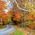 Stone Autumn Road by Krystal Billett