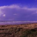 Storm Approaching by Teresa Herlinger