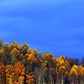 Stormy Sky Last Fall Color by Thomas R Fletcher
