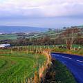 Strabane Plumbridge Road by Thomas R Fletcher