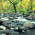 Stream In Cottonwood Canyon, Sedona by Panoramic Images