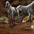 Study Of Wild Horses by MotionAge Designs