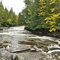 Sturgeon River by Michael Peychich