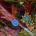Sukkot-the Lulav by Sandrine Kespi