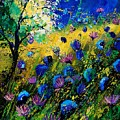 Summer 450208 by Pol Ledent