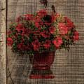 Summer Flowers by Jim Bembinster