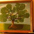 Summer Tree by Ray Martin