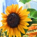 Sunflower In The City by Alice Gipson