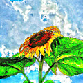 Sunflower In The Sky by Olga Lyakh