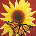 Sunflower Monarch by Debbie Levene