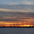 Sunset At Rock Hall, Md by Cindy Roesinger