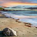 Sunset Beach by Adrian Evans