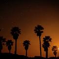 Sunset Beach by David Millenheft