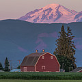 Sunset Reflection On Mt. Baker by Randy Small