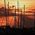 Sunset In Masts, South Fl. by Colleen Fox