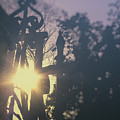 Sunshine by Margie Hurwich
