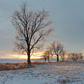 Sunset Over Icy Field by David Junod