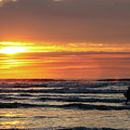 Surfing At Sunset In The Pacific Ocean by Lost River Photography