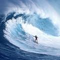 Surfing by Bert Mailer
