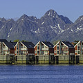Svolvaer Norway by Alan Toepfer