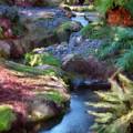 Swamis Garden 1 by Robert Stein