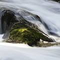 Sweet Creek Oregon 13 by Bob Christopher