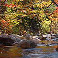 Swift River - White Mountains New Hampshire Usa by Erin Paul Donovan