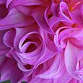 Swirls Of Romance by Michiale Schneider