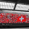 Swiss Train To Zurich by Ginger Wakem