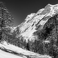 Swiss Winter Mountains by Pixabay