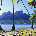 Tahiti, Bora Bora by Peter Stone - Printscapes