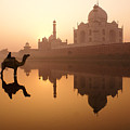 Taj Mahal At Sunrise by Michele Burgess