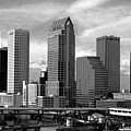 Tampa The Downtown by David Lee Thompson