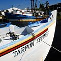 Tarpon Springs by David Lee Thompson