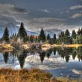 Teton Beaver Pond by David Armstrong