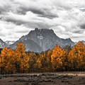 Teton Fall - Modern View Of Mt Moran In Grand Tetons by Southern Plains Photography