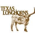 Texas Longhorns by Priscilla Burgers